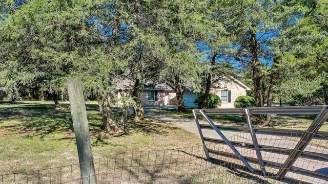1777 Pilot Grove Road, Whitewright, TX 75491 (MLS #14354292) :: North Texas Team | RE/MAX Lifestyle Property