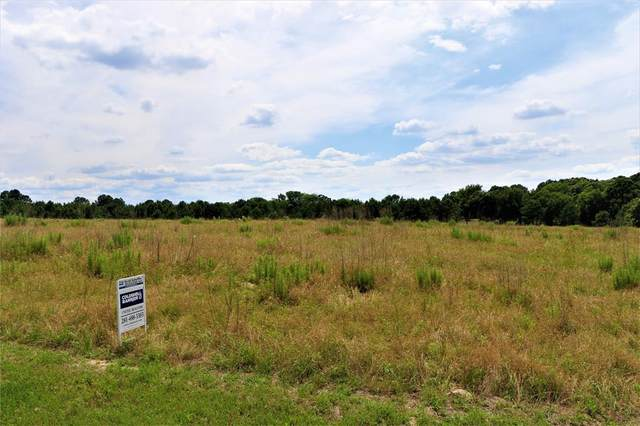 Lot 257 Waters Edge Drive, Larue, TX 75770 (MLS #14354707) :: All Cities USA Realty