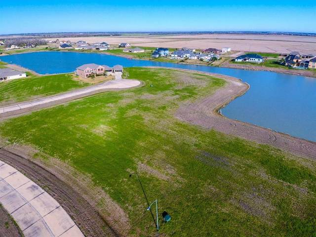 27919 S Shore Court, Rosharon, TX 77583 (MLS #14355317) :: The Mitchell Group