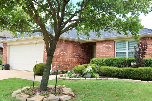 1213 Meadowlark Drive, Little Elm, TX 75068 (MLS #14355539) :: Baldree Home Team