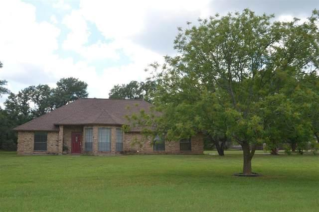 222 Diamond Oaks Drive, Hudson Oaks, TX 76087 (MLS #14355736) :: Maegan Brest | Keller Williams Realty