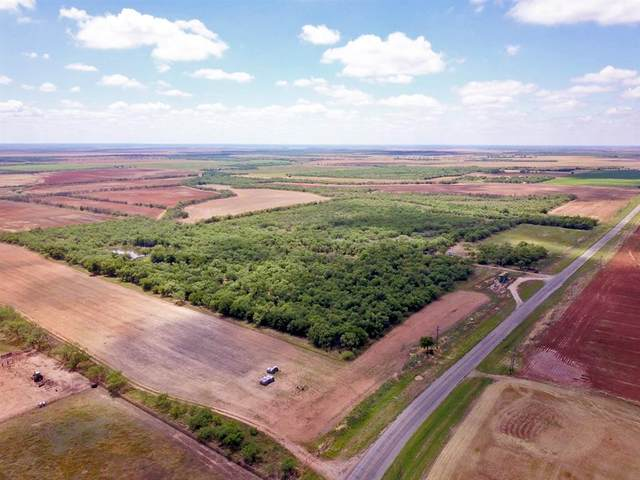 348.8± Acres Fm 600, Haskell, TX 79521 (MLS #14355782) :: Potts Realty Group