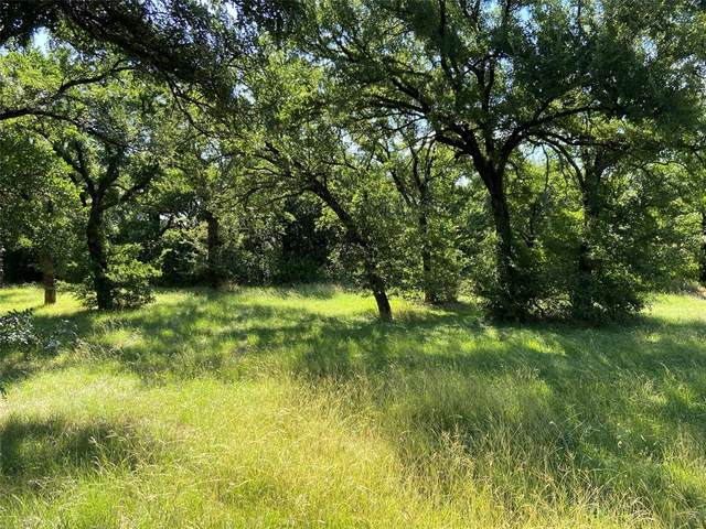 Lot 5 Bellaire Circle, Mineral Wells, TX 76067 (MLS #14356312) :: Potts Realty Group