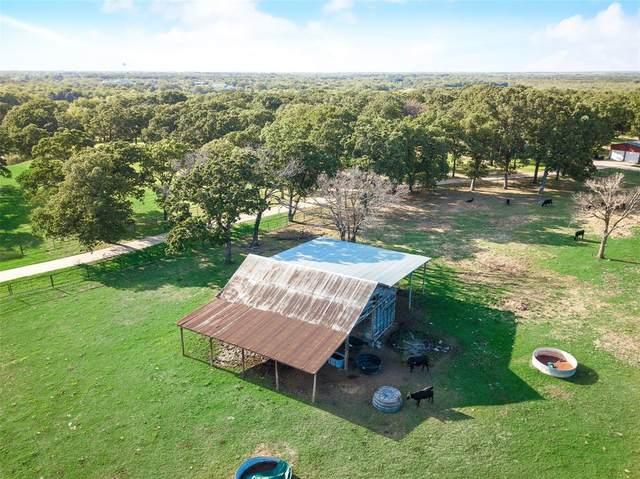 6252 Shady Lane, Scurry, TX 75158 (MLS #14357004) :: The Hornburg Real Estate Group
