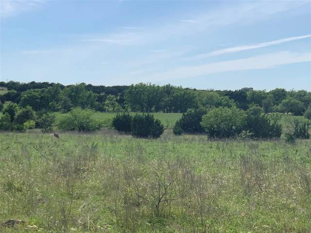tbd  cr County Road 431 West Of G Stub, Jonesboro, TX 76538 (MLS #14357135) :: The Welch Team