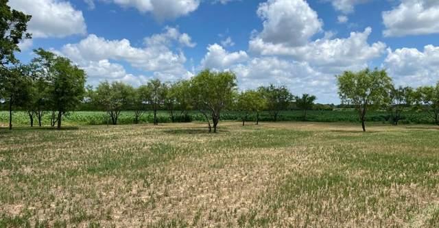 TBD Co Road 271, Rising Star, TX 76471 (MLS #14357405) :: Potts Realty Group