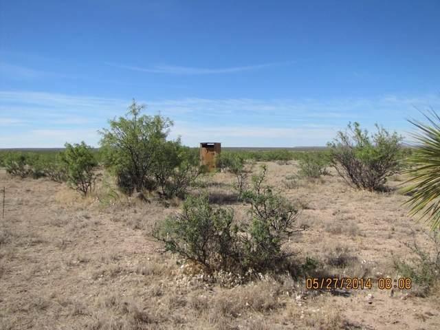 100 Rayburn Run, Sierra Blanca, TX 79851 (MLS #14357496) :: The Kimberly Davis Group