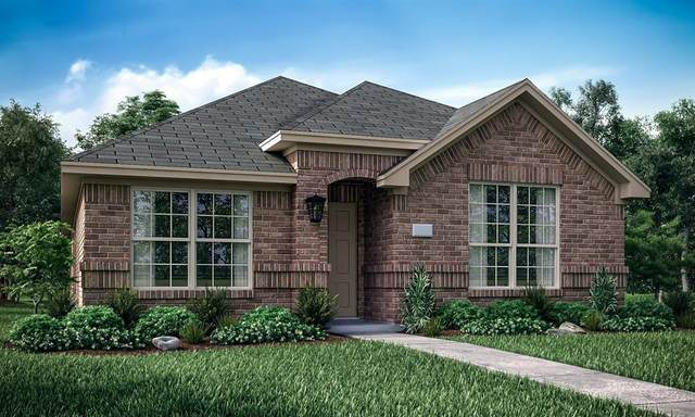 2341 Dolostone Drive, Little Elm, TX 76227 (MLS #14358319) :: Baldree Home Team
