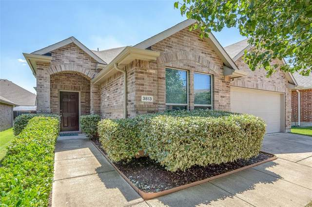 3813 Cliffside Drive, Denton, TX 76208 (MLS #14358390) :: Post Oak Realty