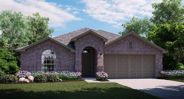 2349 Rosaline Drive, Little Elm, TX 75068 (MLS #14358474) :: The Good Home Team