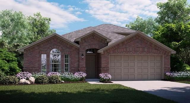 4521 Ashmark Road, Little Elm, TX 75068 (MLS #14359483) :: RE/MAX Pinnacle Group REALTORS