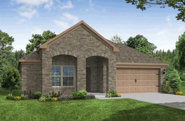6713 Goldenrain Drive, Midlothian, TX 76065 (MLS #14360489) :: The Hornburg Real Estate Group