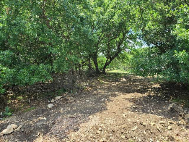 TBD Oak Farm Drive, May, TX 76857 (MLS #14360530) :: Team Hodnett