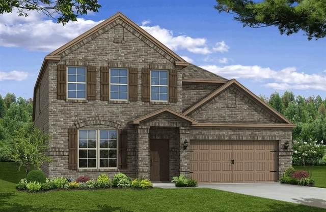 6709 Goldenrain Drive, Midlothian, TX 76065 (MLS #14360541) :: The Hornburg Real Estate Group