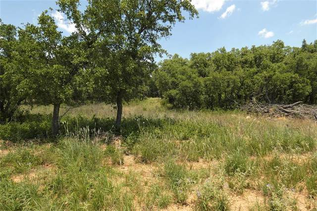 Lot1128 Lake Breeze Drive, Brownwood, TX 76801 (MLS #14360949) :: The Chad Smith Team