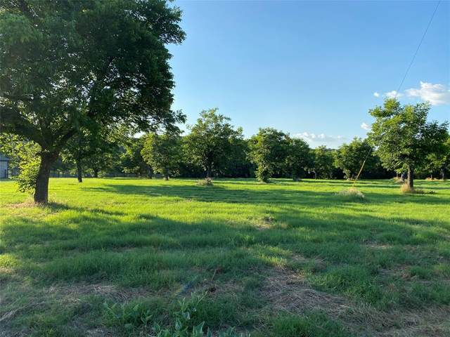 10076 Orchards Boulevard, Cleburne, TX 76033 (MLS #14361159) :: Potts Realty Group