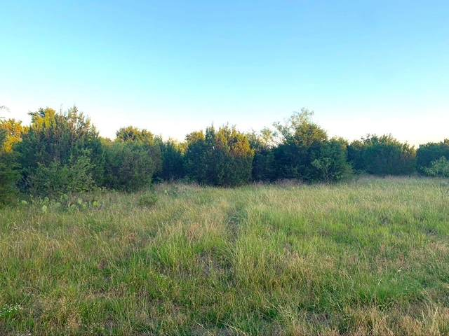 00 Schooner Way, Bluff Dale, TX 76433 (MLS #14361242) :: The Kimberly Davis Group