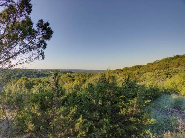3915 Jimmy Houston Way, Bluff Dale, TX 76433 (MLS #14361755) :: The Kimberly Davis Group