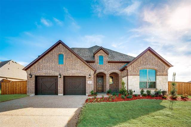 240 Waterview Court, Hickory Creek, TX 75065 (MLS #14363422) :: Baldree Home Team