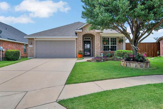 204 Parakeet Drive, Little Elm, TX 75068 (MLS #14363714) :: The Daniel Team