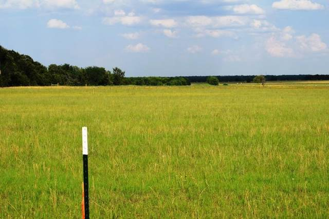 Lot 3 Cr 4125, Campbell, TX 75422 (MLS #14367266) :: Trinity Premier Properties
