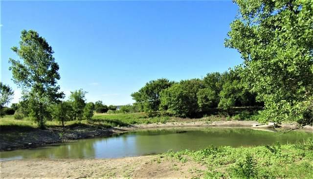 TBD Farm Road 219, Carlton, TX 76436 (MLS #14367755) :: ACR- ANN CARR REALTORS®