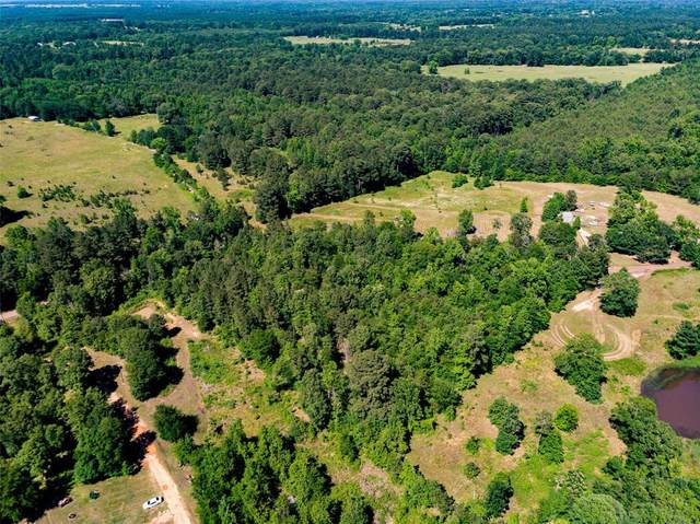 4.5 Ac Poinsettia Road, Gilmer, TX 75644 (MLS #14368210) :: The Kimberly Davis Group