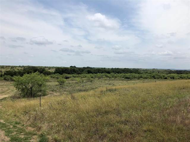 199 Hawkwood Court, Comanche, TX 76442 (MLS #14368932) :: The Daniel Team