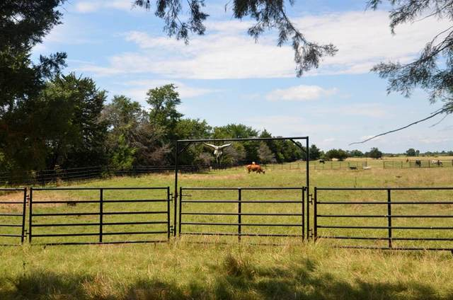 19.9 Ac Cr 2116, Ivanhoe, TX 75447 (MLS #14370030) :: The Heyl Group at Keller Williams