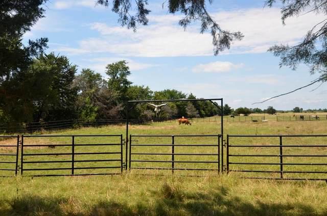19.9 Ac Cr 2116, Ivanhoe, TX 75447 (MLS #14370030) :: The Heyl Group at Keller Williams