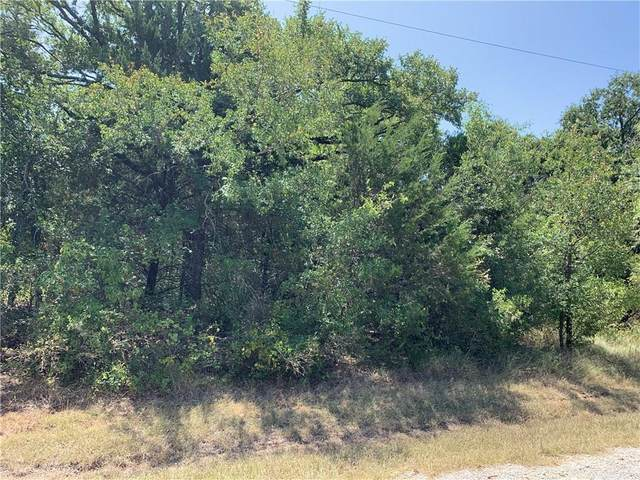 18041 Southhill Drive, Whitney, TX 76692 (MLS #14370437) :: Tenesha Lusk Realty Group