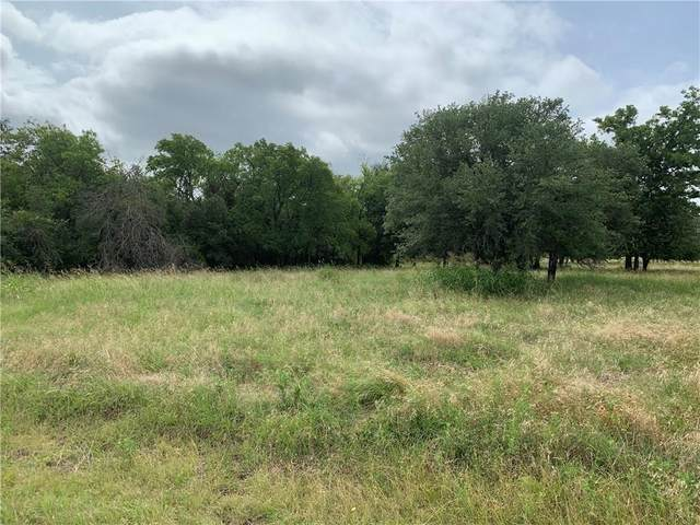 1090 White Bluff Drive, Whitney, TX 76692 (MLS #14371249) :: Real Estate By Design