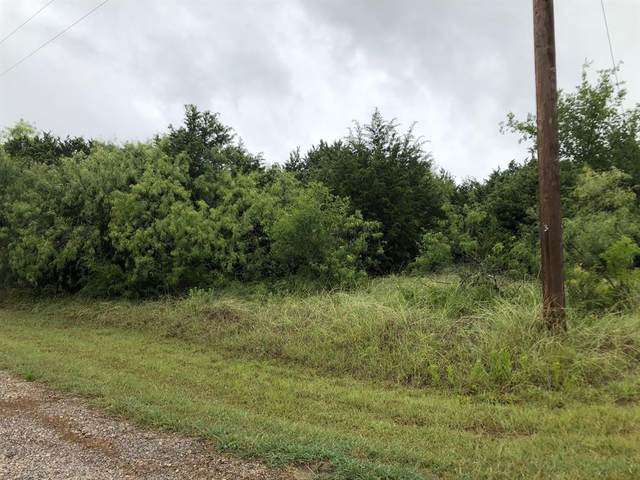 30010 Woodcrest Drive, Whitney, TX 76692 (MLS #14371288) :: The Kimberly Davis Group