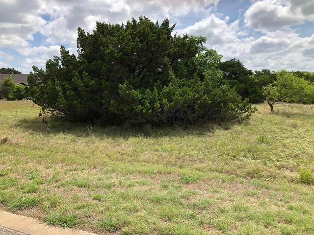 42171 Augusta Drive, Whitney, TX 76692 (MLS #14371326) :: The Good Home Team