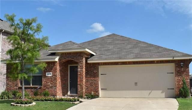 2006 Diamondback, Forney, TX 75126 (MLS #14371704) :: RE/MAX Landmark