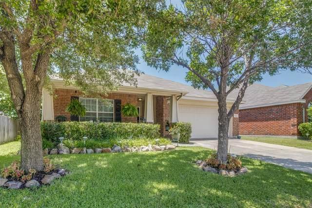 1011 Aviary, Aubrey, TX 76227 (MLS #14371916) :: The Kimberly Davis Group