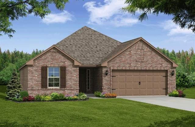 6717 Goldenrain Drive, Midlothian, TX 76065 (MLS #14371920) :: The Hornburg Real Estate Group
