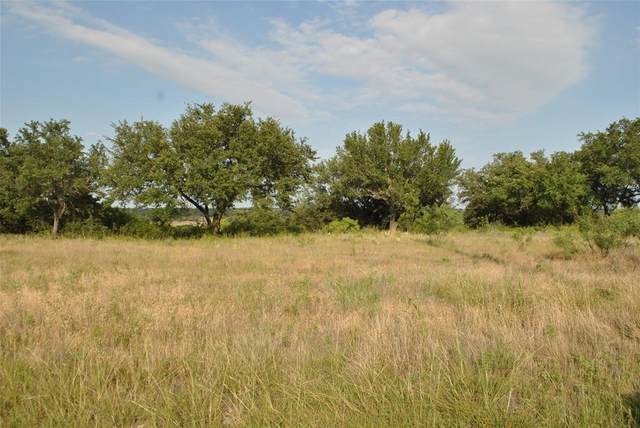Lot 479 Anchors Away, Brownwood, TX 76801 (MLS #14372303) :: The Chad Smith Team