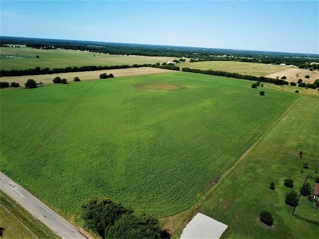 1000 Bucksnort Road, Van Alstyne, TX 75495 (MLS #14373007) :: The Kimberly Davis Group