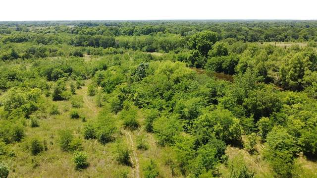 22 ac County Rd 4411, Commerce, TX 75428 (MLS #14373996) :: Team Hodnett