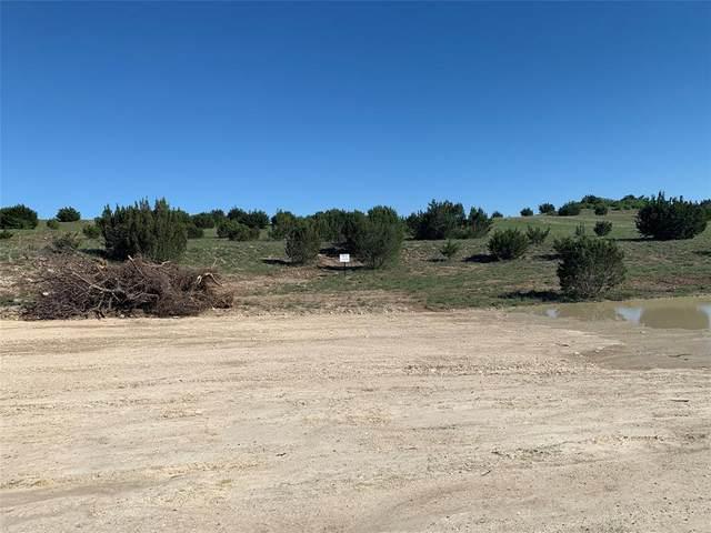 LOT 18 Eagles Bulff Drive, Weatherford, TX 76087 (MLS #14374705) :: RE/MAX Pinnacle Group REALTORS