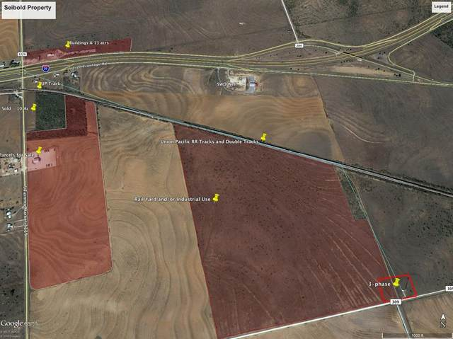 305 County Rd 305, Colorado City, TX 79512 (MLS #14375368) :: The Welch Team