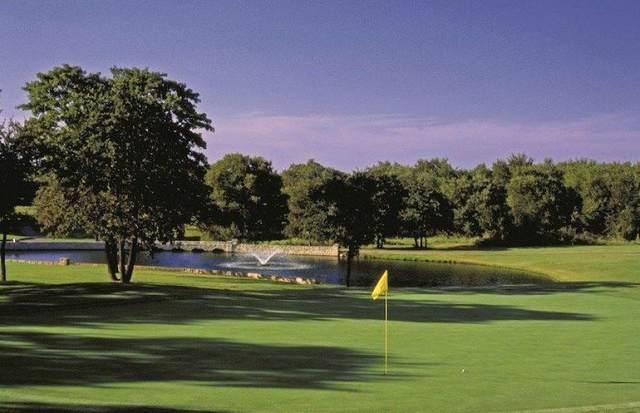 7057 Golf Drive, Whitney, TX 76692 (MLS #14376643) :: Tenesha Lusk Realty Group