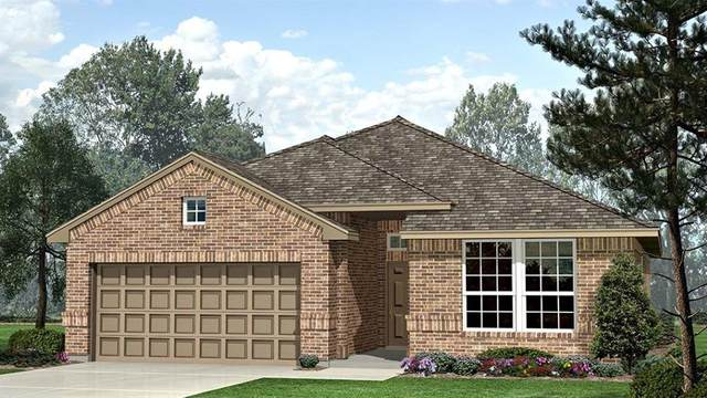 1113 Larkspur Lane, Cleburne, TX 76033 (MLS #14377605) :: The Rhodes Team