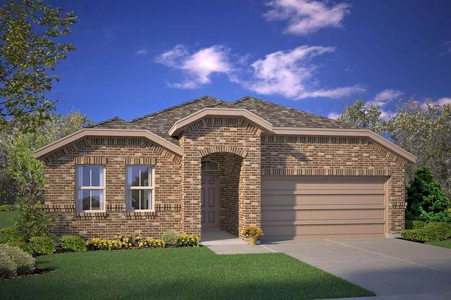 1107 Larkspur Lane, Cleburne, TX 76033 (MLS #14377615) :: The Kimberly Davis Group