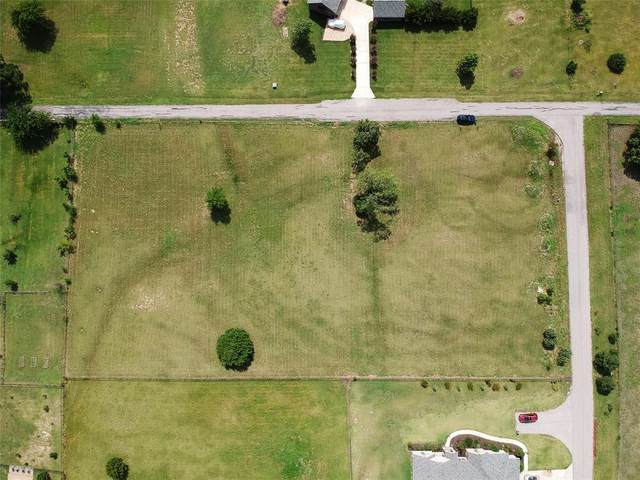 1753 Stacy Road, Fairview, TX 75069 (MLS #14377747) :: Frankie Arthur Real Estate