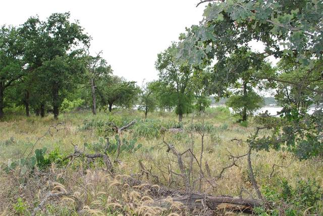 Lot #14 Hawk Lane, Lake Brownwood, TX 76801 (MLS #14377831) :: The Chad Smith Team