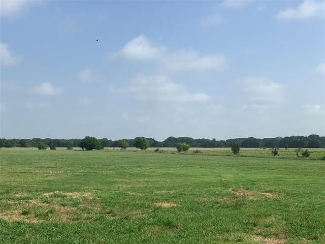 0000 County Road 2245, Ivanhoe, TX 75447 (MLS #14377884) :: The Heyl Group at Keller Williams