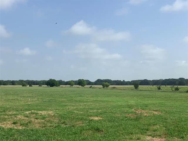 0000 County Road 2245, Ivanhoe, TX 75447 (MLS #14377884) :: The Kimberly Davis Group