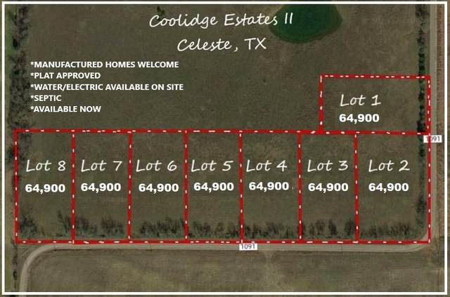 Lot 1 County Road 1091, Celeste, TX 75423 (MLS #14377914) :: The Kimberly Davis Group
